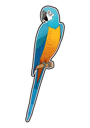 Beautiful tropical exotic parrot bird. Vector illustration.