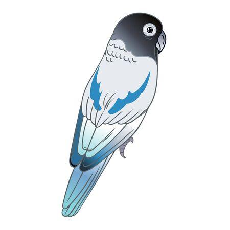 Beautiful tropical exotic lovebird. Vector illustration.