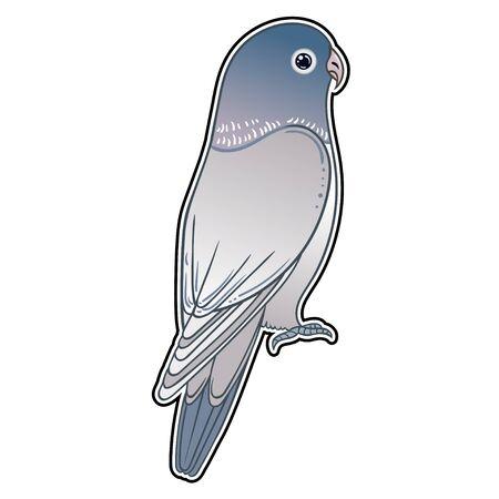 Beautiful tropical exotic parrot bird. Vector illustration. Stock Illustratie