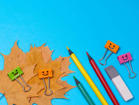 Yellow, Green and Red Pencils on Blue Background. Eraser, office supplies on table. Education concept. Back to school on Yellow Fallen Maple Leaves. Smile colored binder clips Archivio Fotografico