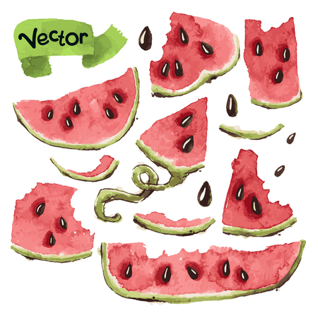 drawing paper: Set of Vector Watercolors Watermelon Slices. Isolated on White.  Illustration