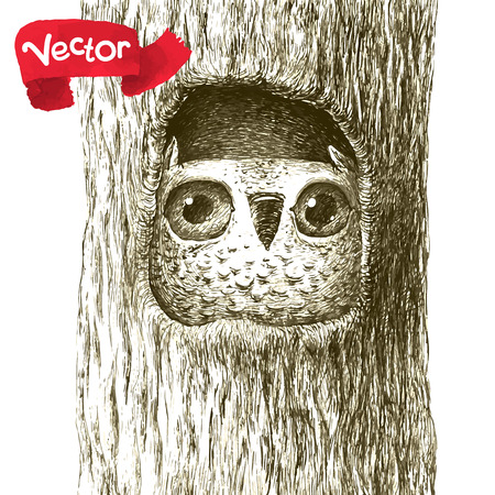 pen on paper: Cute Baby Owl Sitting in a Tree Hollow.