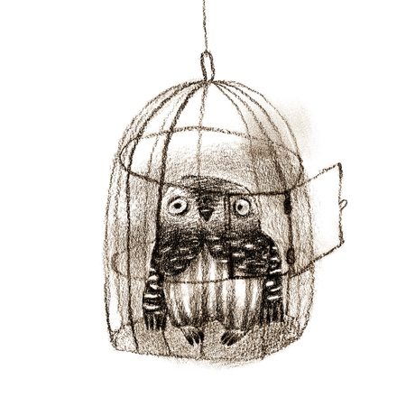 pencil cartoon: Little owl sitting in a birdcage witn an opened door. Isolated on white. Original high resolution graphic artwork.