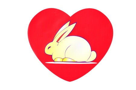 Bunny of love. Rabbit in a red heart. photo