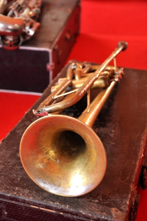 The trumpet is the musical instrument with the highest register in the brass family. photo