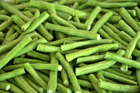 Yardlong beans are quick-growing and daily checking harvesting is often a necessity Stock Photo - 14670466