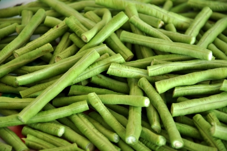 Yardlong beans are quick-growing and daily checking harvesting is often a necessity   Stock Photo - 14670507