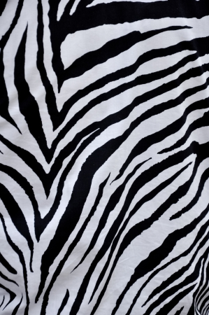 Zebra fabric made of tightly woven cotton Stock Photo