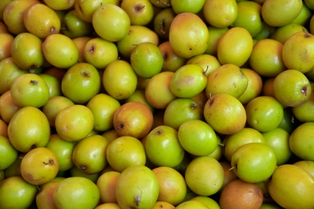 Ziziphus mauritiana, also known as Ber, Chinee Apple, Jujube, Indian plum and Masau is a tropical fruit tree species Stock Photo - 18218160