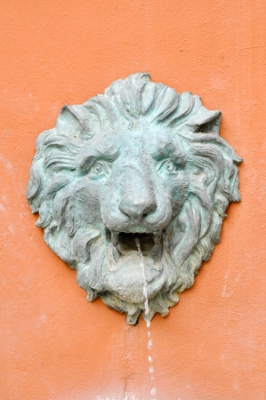 fountain lion on orange wall photo
