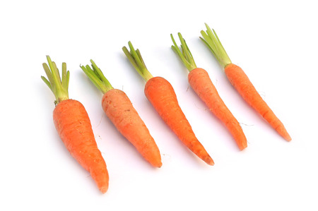 The immature roots of the carrot plant on white background photo