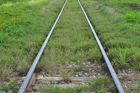 Railway tracks with grass covered up, but still can be used normally  photo