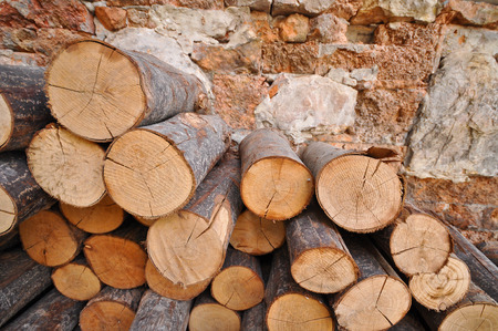 provide: We use them for firewood as fuel to provide warmth in winter.