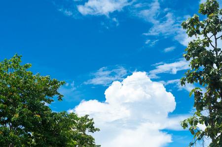 Blue sky on sunshine day