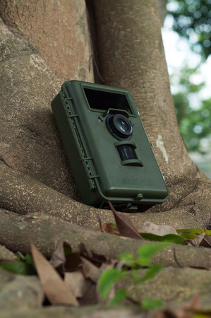 Camera trapping is an important tool in forest survey and research. Stock Photo