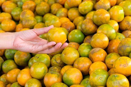 Choose best orange in the market Foto de archivo - 131986013