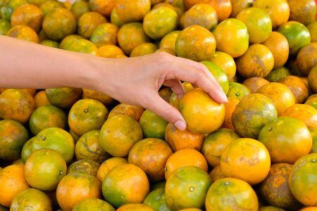 Choose best orange in the market Foto de archivo - 131987884