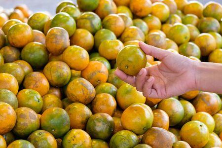 Choose best orange in the market Foto de archivo - 131987849