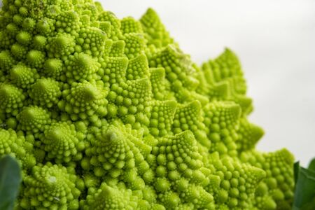 Romanesco broccoli has many benefits such as vitamin B, vitamin C, folate, iron, potassium and amino acids. Imagens
