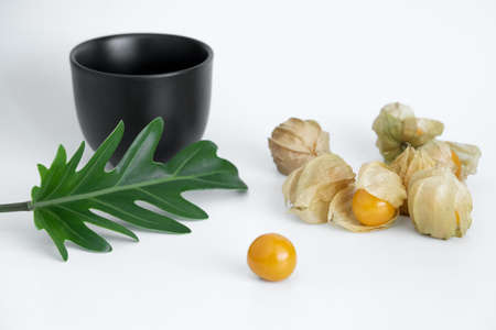 Cape gooseberrys are decorated with xanadu leaf on white background. 免版税图像