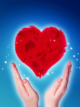 gift of hope: two hands holding a red furry heart on blue background