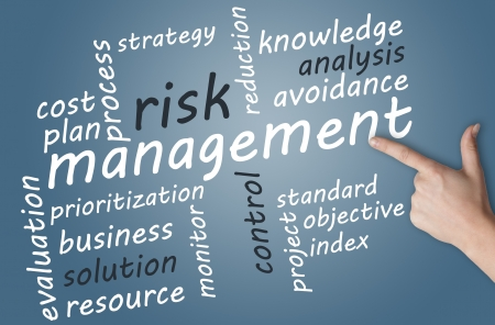 Business concept: Risk management in word tag cloud photo