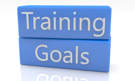 3d render blue box with Training Goals on it on white background with reflection Stock Photo - 25174014