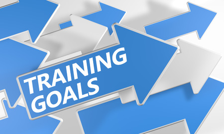 Training Goals 3d render concept with blue and white arrows flying over a white background. photo