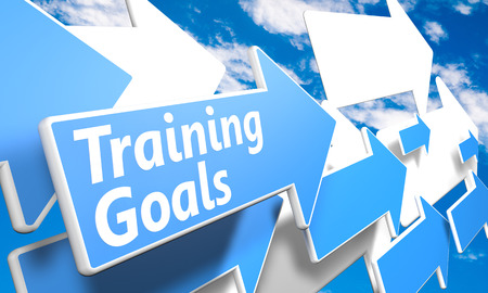 Training Goals 3d render concept with blue and white arrows flying in a blue sky with clouds Stock Photo - 25657243