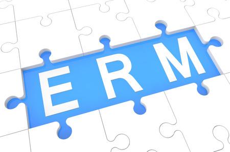 Enterprise RiskResource Management - puzzle 3d render illustration with word on blue background