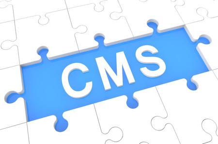 Content Management System - puzzle 3d render illustration with word on blue background illustration