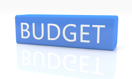 budgets: 3d render blue box with text Budget on it on white background with reflection