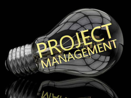 management concept: Project Management - lightbulb on black background with text in it. 3d render illustration.