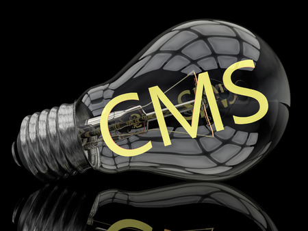 CMS - Content Management System - lightbulb on black background with text in it. 3d render illustration.