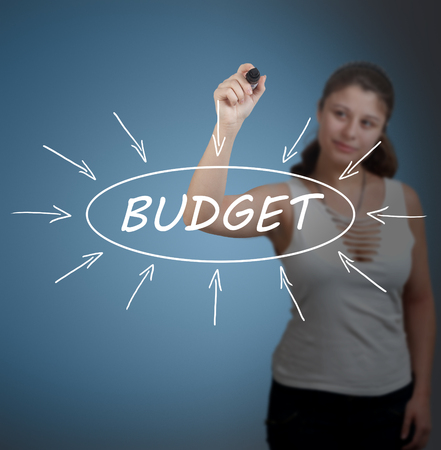 budgets: Budget - young businesswoman drawing information concept on transparent whiteboard in front of her.