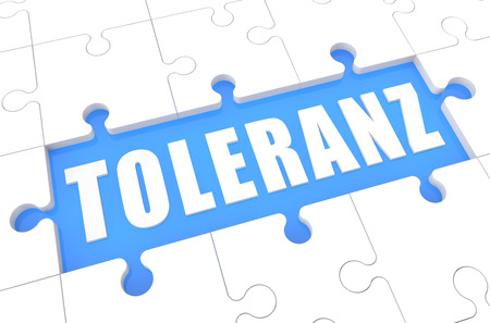 tolerate: Toleranz - german word for tolerance - puzzle 3d render illustration with word on blue background Stock Photo