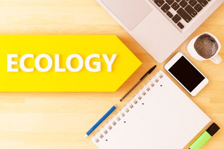 Ecology  text arrow concept with notebook, smartphone, pens and coffee mug on desktop 写真素材