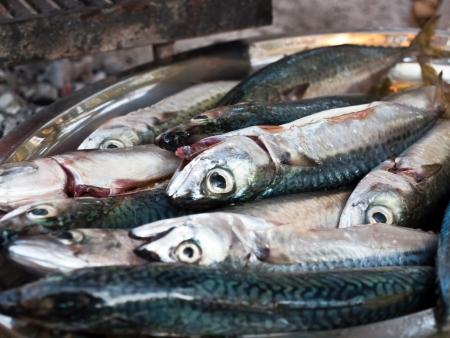 Fresh mackarel fish prepared for a grill Stock Photo