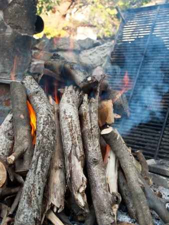 Image shows preparing fire for a grill Stock Photo - 15551431