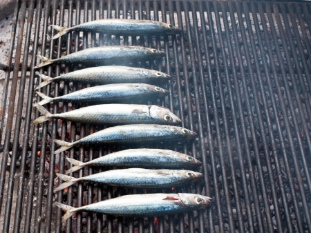 Image shows a mackarel fish on hot grill photo
