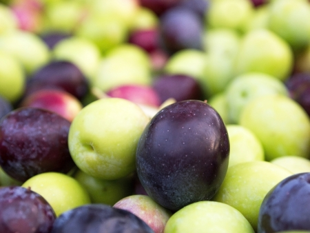 Many colorful olives close up