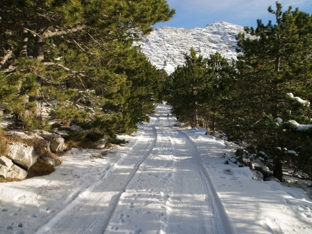 Snow covered road on mountain
