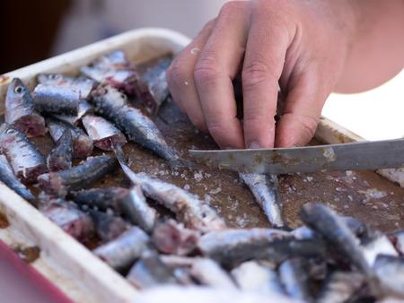 Fisherman preparing sardines for fishing Stock Photo