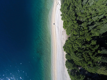 Aerial view at beach and calm sea with pine trees around
