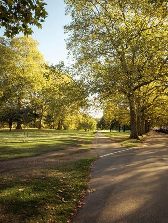 Empty city park on beautiful sunny day Stock Photo