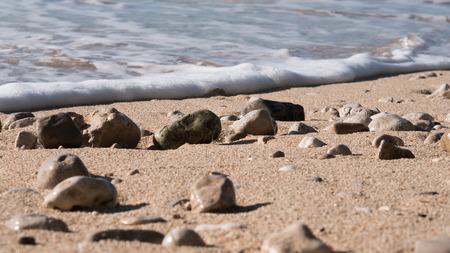 Sand beach with rocks and sea foam
