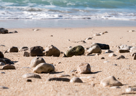 Sand beach with small rocks coastline on sunny day