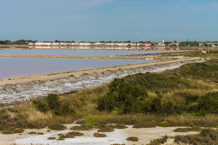 salinity: Salt lake (salin de Giraud) in Camargue, south of France