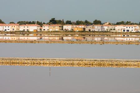 camargue: Salt lake (salin de Giraud) in Camargue, south of France