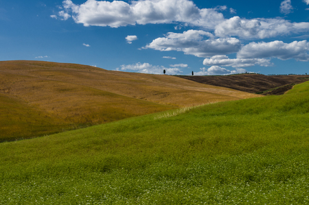 val d'orcia: Val dorcia landscape in Tuscany Stock Photo